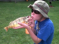 liam-perch-fishing-001